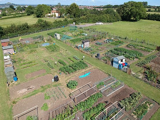 aerial view of allotment field